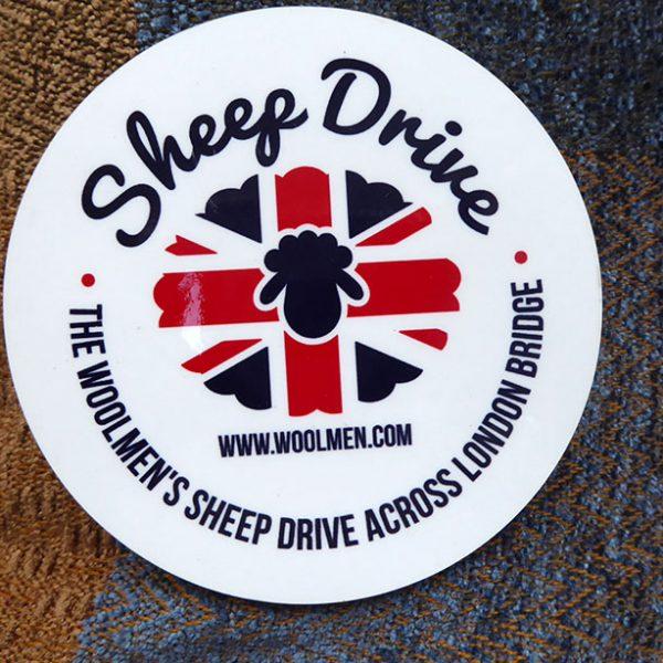 Sheep Drive Sheep Coaster